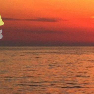 Ibiza day Sailing and Barcelona Sail