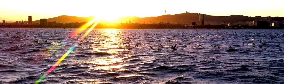 Sunset Barcelona coast line during sailing experience with Sailing Barcelona best boat tours